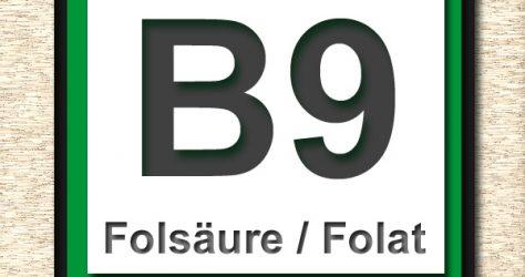 Vitamin B9 Folsaeure Flora Becherglas