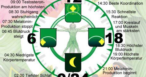Biologische Uhr v2
