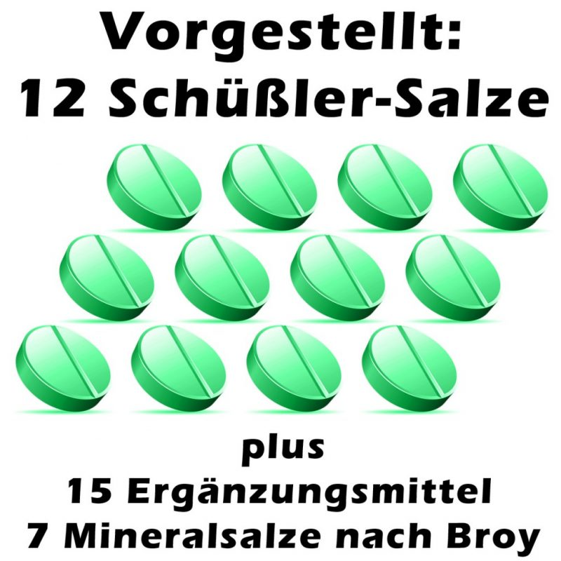 Die 12 Schuessler-Salze