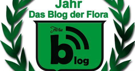 blog 1y