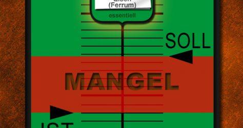 Eisenmangel Fe