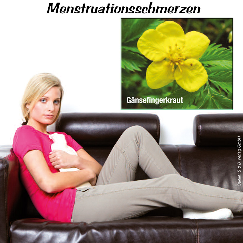 menstruationsschmerzen flora apotheke hannover. Black Bedroom Furniture Sets. Home Design Ideas