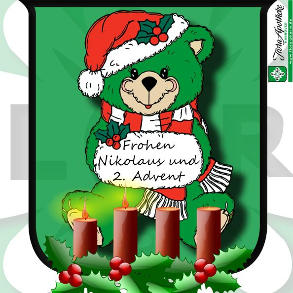 teddy-2-advent+nikolaus