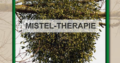 mistel-therapie