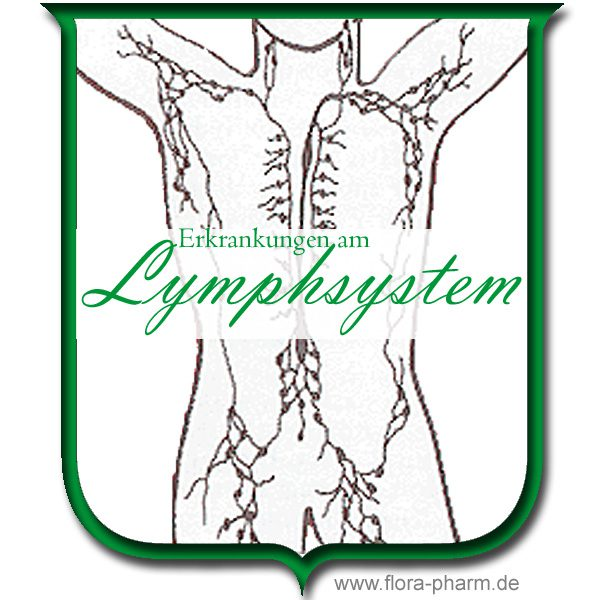 Erkrankungen des Lymphsystems - Flora Apotheke Hannover