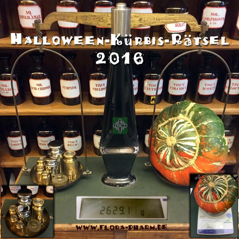 kuerbis-ergebnis-halloween-2016