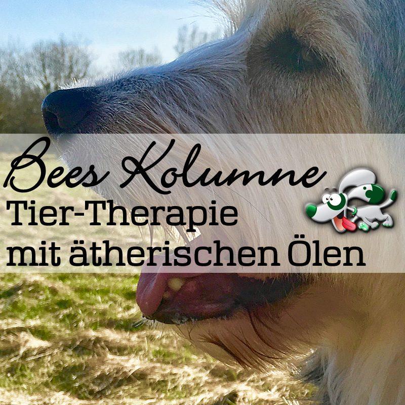 Duftmedizin - Aromatherapie - Ätherische Öle für Tiere