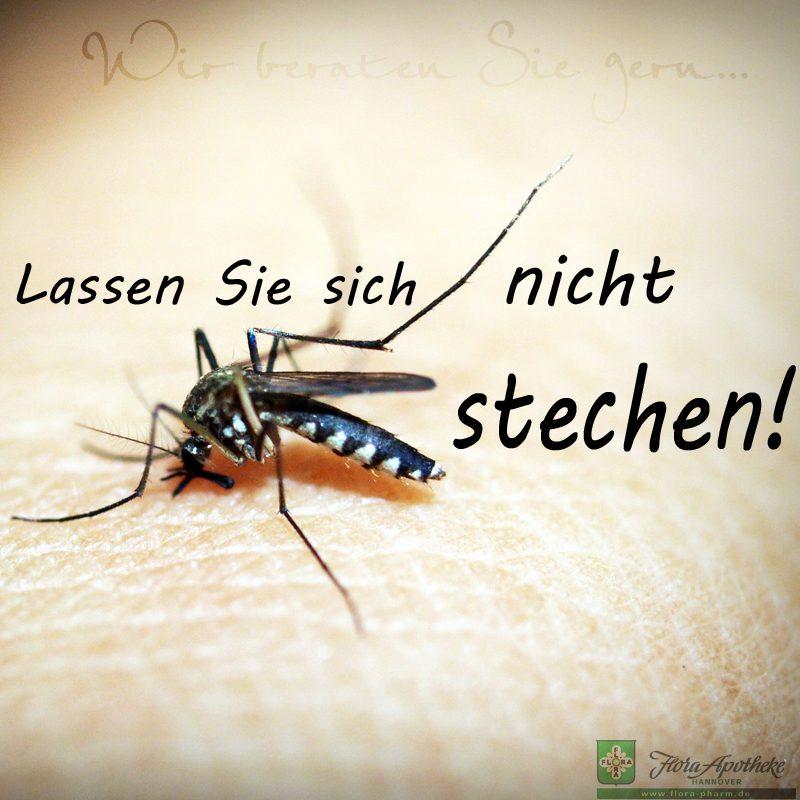 Mückenstich vermeiden