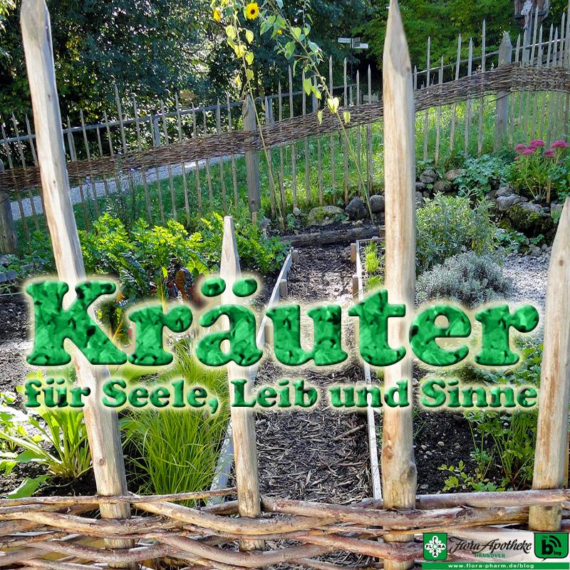 Kräuter Klostergarten