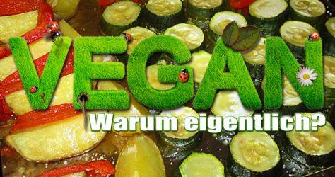 Vegan - Warum - Gründe
