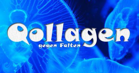 Qollagen gegen Falten