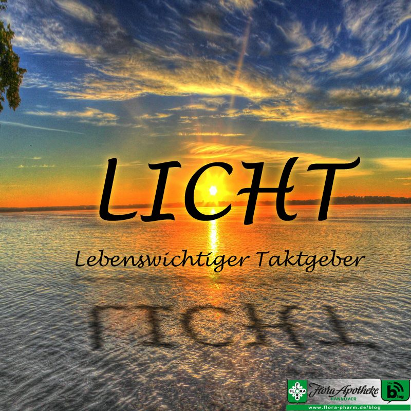 Licht Taktgeber innere Uhr