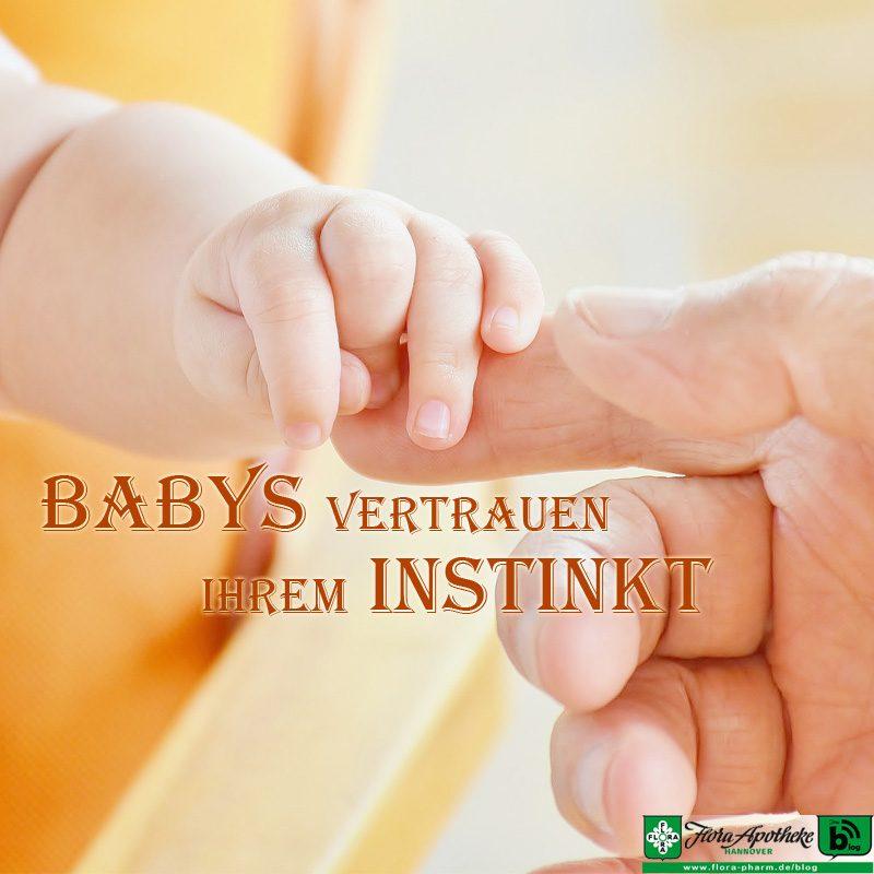 Baby Hebamme Vertrauen