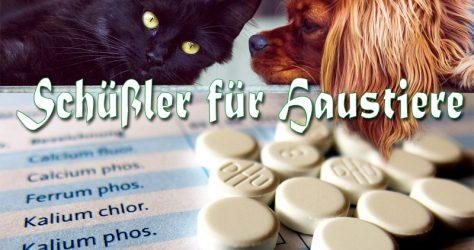 Schüßler-Salze für Haustiere