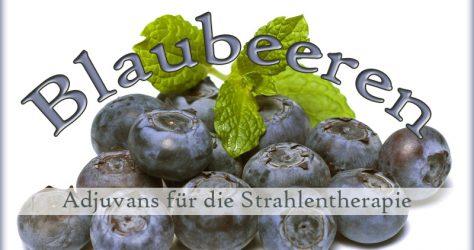 Blaubeeren / Heidelbeeren als Adjuvanz bei Strahlentherapie