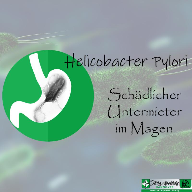 Helicobacter Pylori - Magen