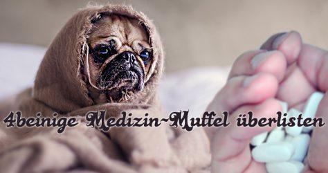 Haustieren Medikamente geben - Überlistung