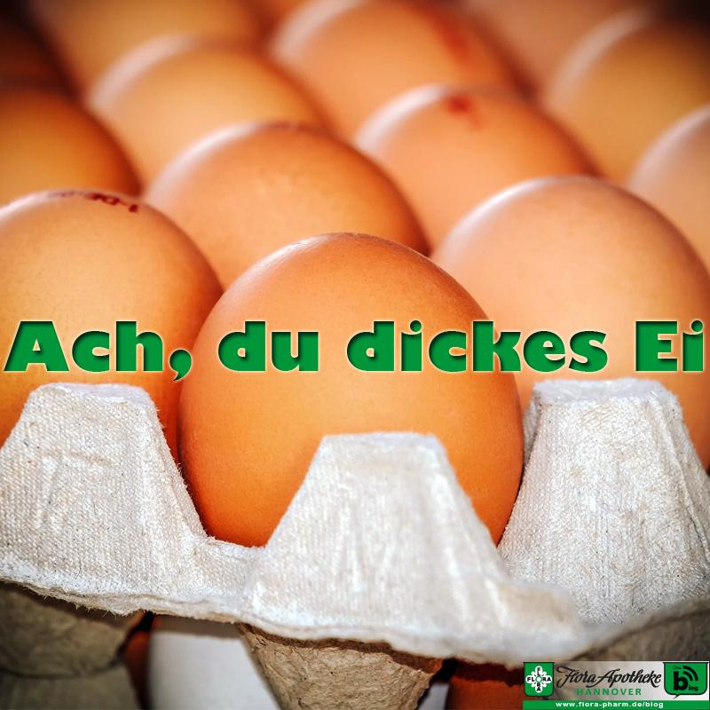 Eier, Haltungsformen und was der Stempel aussagt