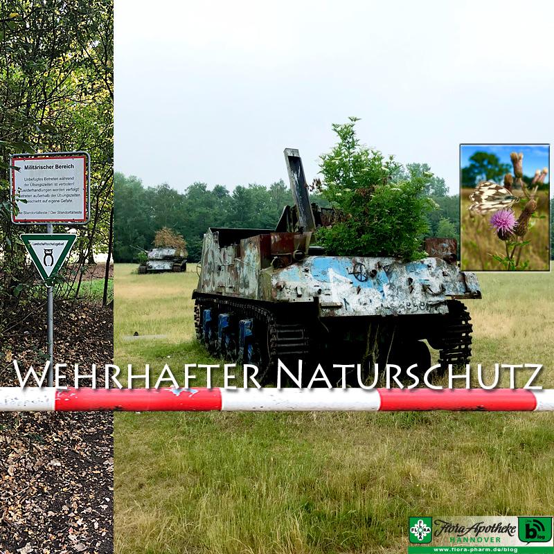 Naturschutz Truppenübungsplatz