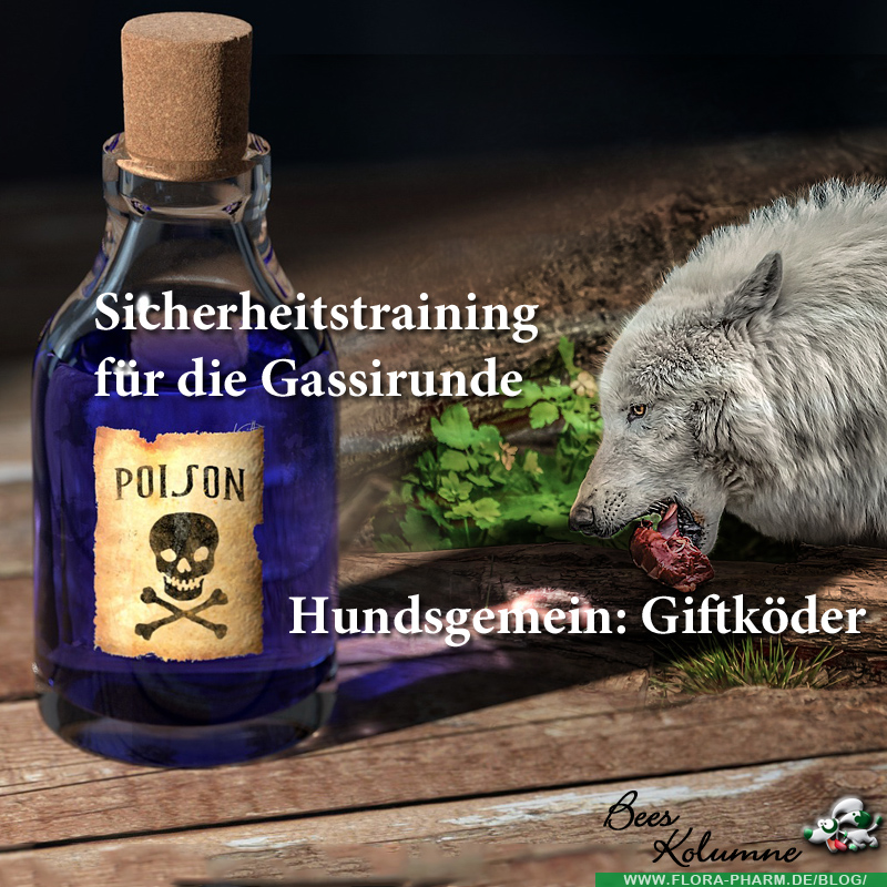 hundsgemein: Giftköder