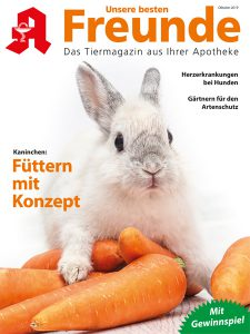 Cover 10/19 UbF
