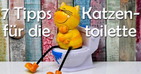 Katzenklo - Katzentoilette