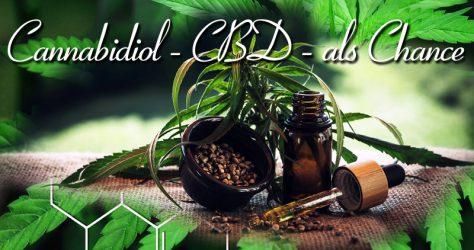 Cannabidiol CBD als Chance