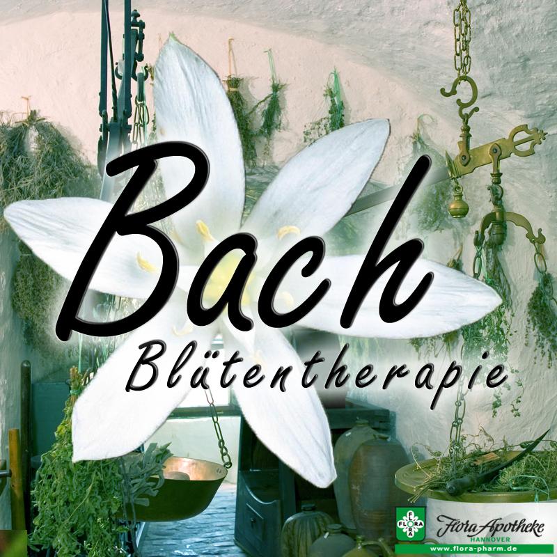 bachblueten therapie