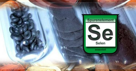 selen-SE