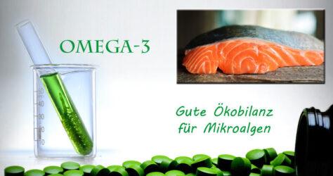 Omega-3 Mikroalgen
