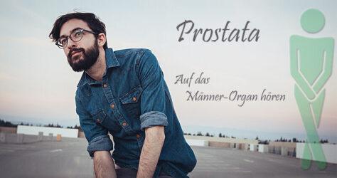 Prostata Männer-Organ