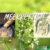 Meerrettich / Kren - Heilpflanze des Jahres 2021