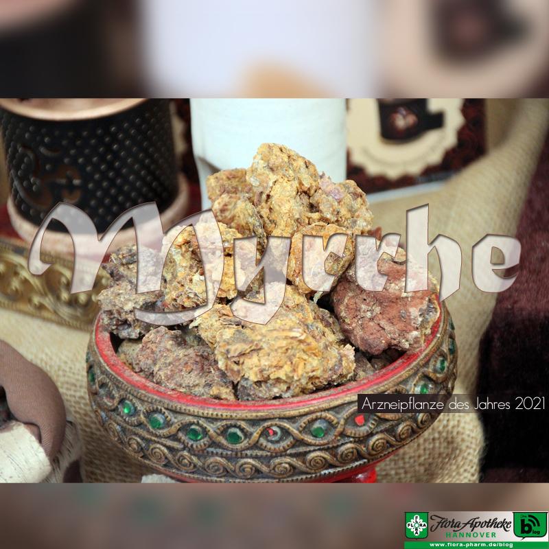 Myrrhe, Arzneipflanze 2021