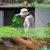 Rückenfreundliche Gartenarbeit