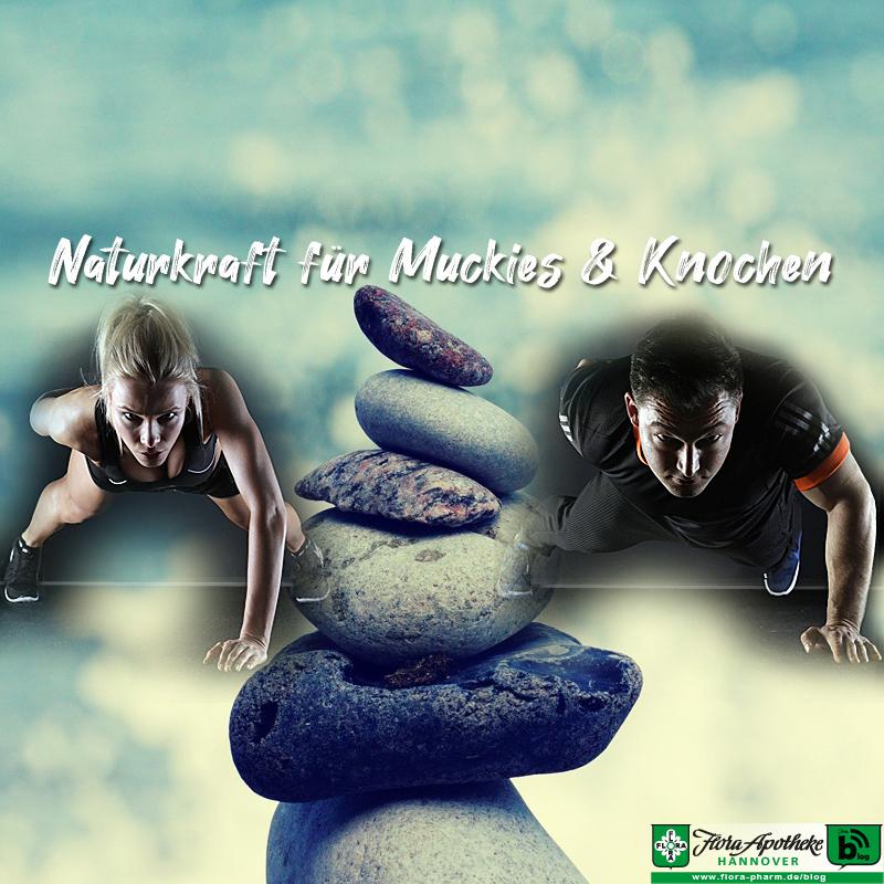 Naturkraft für Muckies & Knochen